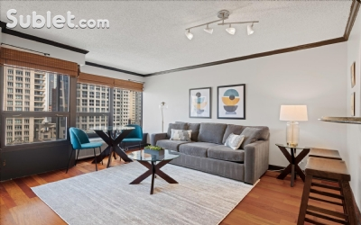 Image 3 furnished 1 bedroom Apartment for rent in Near North, Downtown