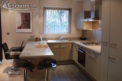 Image 1 furnished 2 bedroom Apartment for rent in Malone, Belfast City