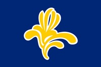 Image of Brussels flag